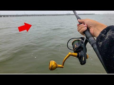 INSANE beach fishing FRENZY!! (Monsters!)