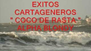 COCO DE RASTA