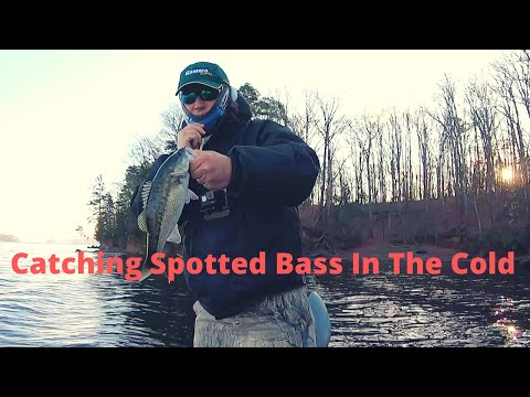 Catching Spotted Bass In The Cold