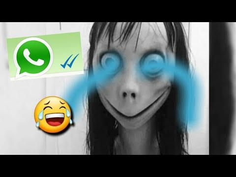 Momo Whatsapp Chat