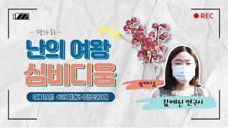 [평가회] 육성 중인 심비디움 최초 공개! 원하는 색 …