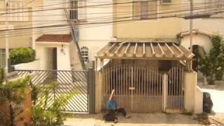Diário de Imagens 05.11.2010