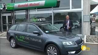 ŠKODA Octavia Wagon G-TEC a Metano - Bonaldi Motori thumbnail