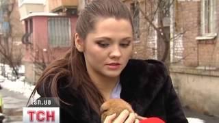 ТСН разыскивает хозяев для 19 щенков-сирот