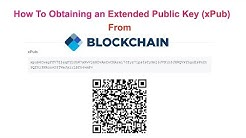 How To Obtaining an Extended Public Key xPub From Blockchain Wallet