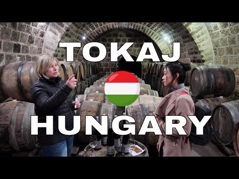 Hungarian Wine: Exotic Wine Travel in Tokaj, Hungary
