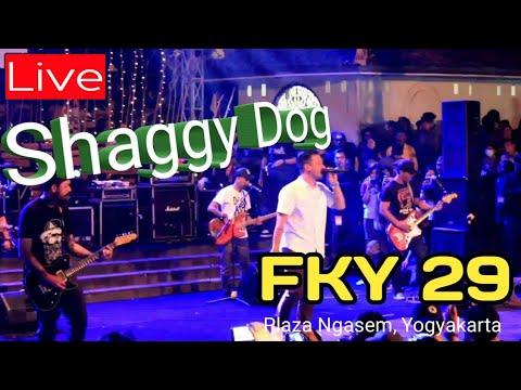 SHAGGY DOG | LIVE AT FKY - 29 KOTA JOGJA