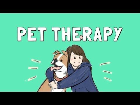 pets health