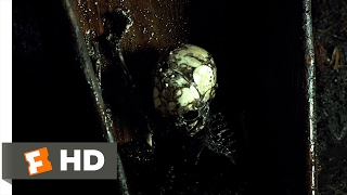 Jessabelle (2014) - Exhuming The Body Scene (7/10) | Movieclips