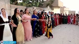 AŞİret DÜĞÜnÜ Goyİ AŞİretİ Damat Öyle BİŞey Yapti Kİİ !!!! Foto Deniz Silopi