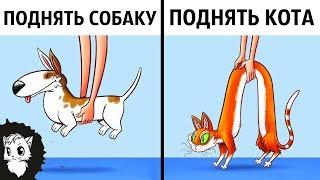 КОШКИ И СОБАКИ С РАЗНЫХ ПЛАНЕТ И ВОТ ПОЧЕМУ [Белый кот]