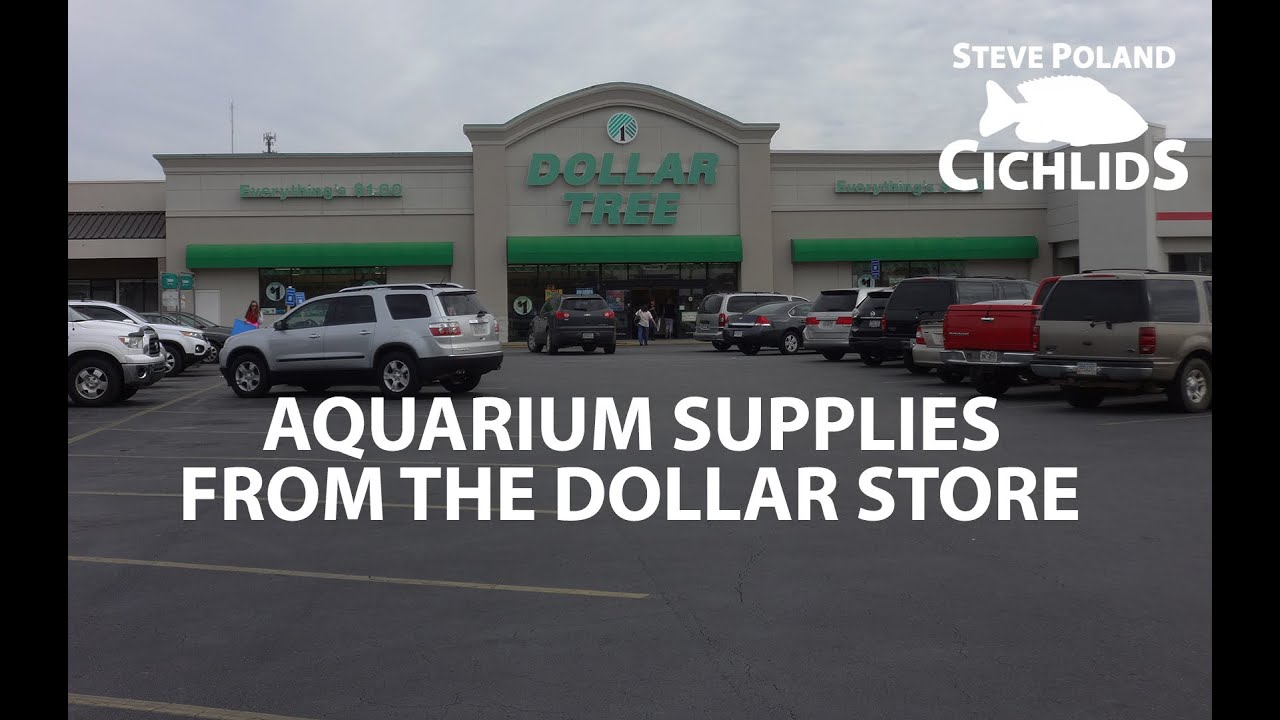 Aquarium Supplies From The Dollar Store Youtube