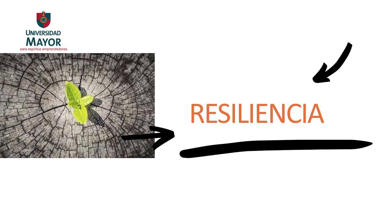 Download Trabajo Resiliencia CAU