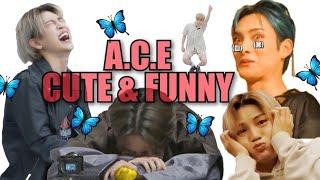 A.C.E CUTE \u0026 FUNNY MOMENTS #38 [Favorite Boys Comeback!!!]