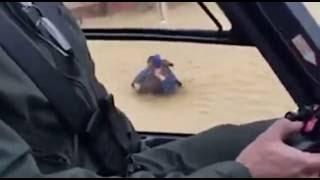 Nubifragio in Andalusia, il salvataggio del cane è in elicottero