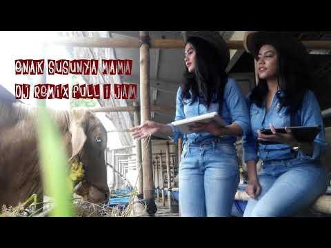Remix Dj Enak Susunya Mama2 Full 1 Jam Non Stops  Terhits 2018-2019