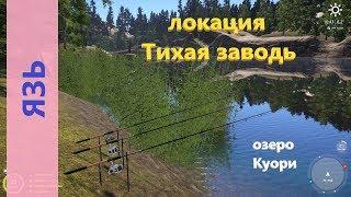 Русская рыбалка 4 озеро Куори Язь в камышах