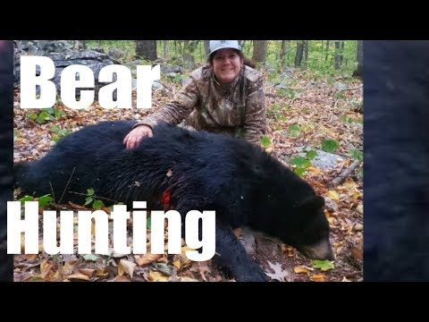 BEAR HUNTING NJ 2019 With The BOW