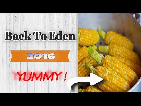 2016 Back To Eden Gardening ~ Corn Update 2 - YouTube