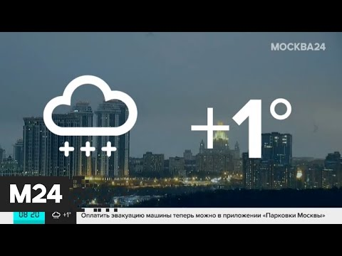 """""""Утро"""": снежная и дождливая погода ожидается в столичном регионе 13 января - Москва 24"""