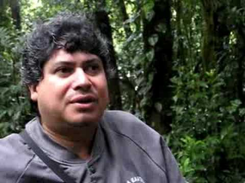monteverde cloud forest tour guide costa rica