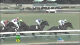 2011/01/05 コスモメドウ 万葉ステークス