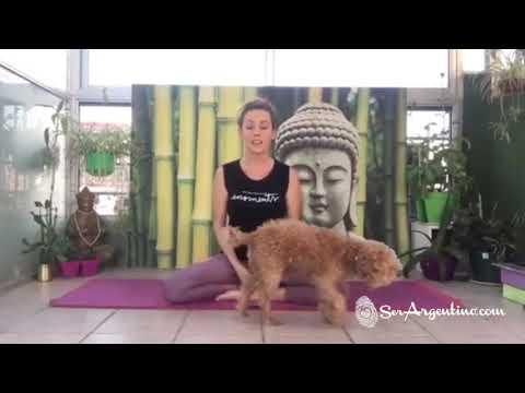 Clases de Yoga por Celina - V