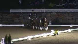 Démonstration Attelage a 4 chevaux par Eugen Hug