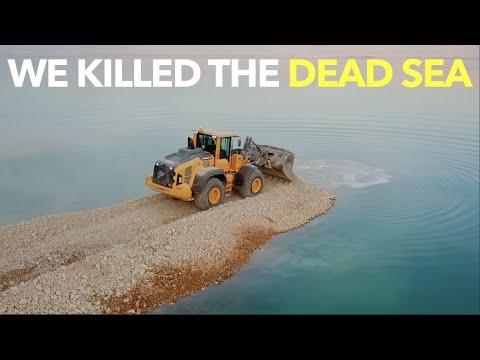 We Killed The Dead Sea