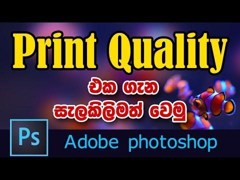 Photoshop Tutorial (Sinhala) | What is Print Quality? (Basic) thumbnail