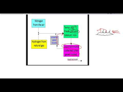 Equilibrium considerations for the Haber process