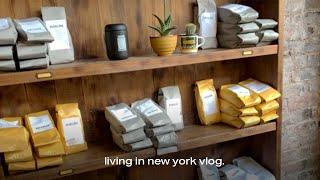 vlog I 뉴욕 직장인 브이로그 I 브루클린 힙스터 …