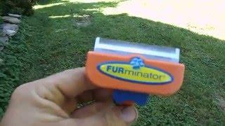 Dog Shedding Remedy Furminator Dog Hair Brush Review