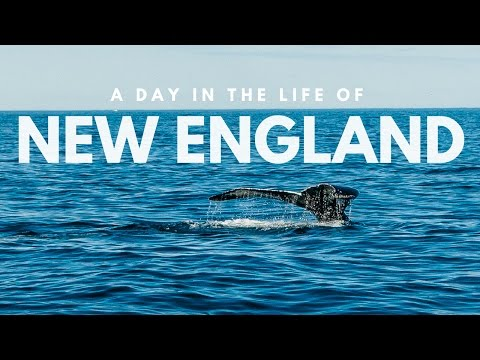 A day in the life of the New England coast