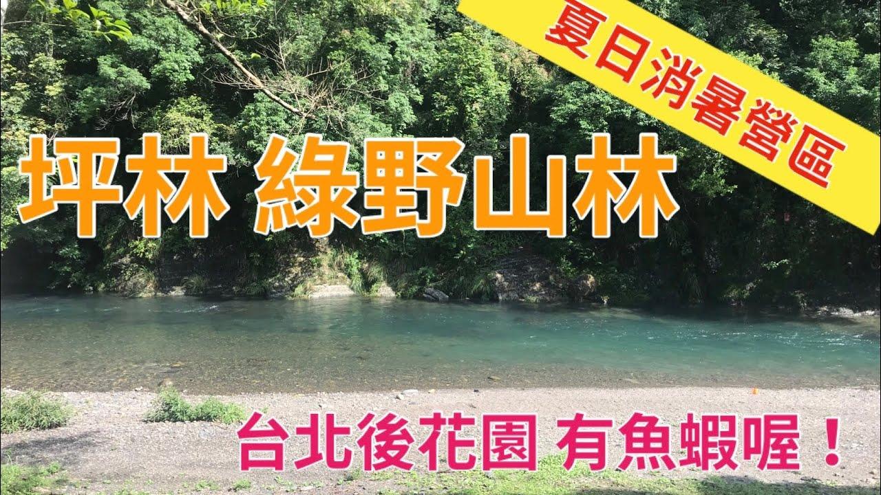 坪林 綠野山林露營區 玩水消暑營地 距離臺北近 - YouTube