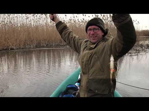 Рыбалка в Астрахани. Река кипит от рыбы Ловим рыбу сачком. Весна 2018 Мумра,  рыбацкая база 777-999