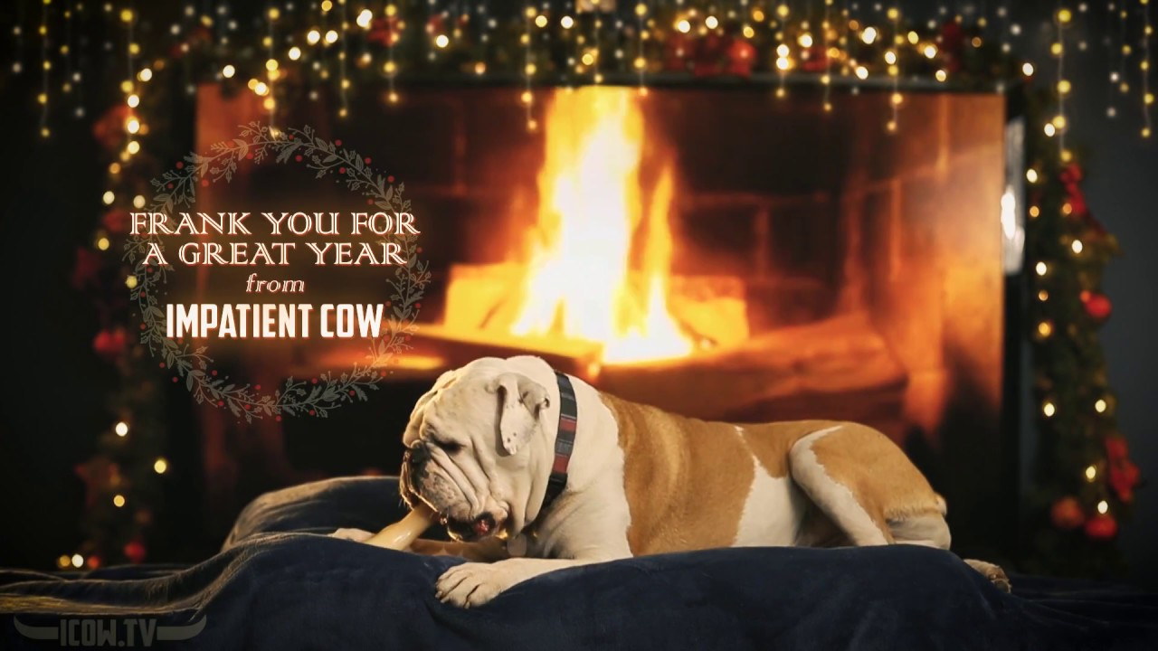Snoozing Yule Log Bulldog Full Hd Fireplace With Crackling Sounds Youtube