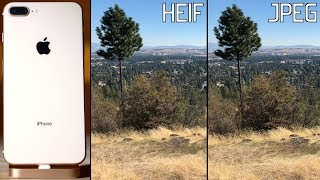 Does HEIF in iOS 11 kill iPhone 8 photo quality? HEIF vs JPEG Compared