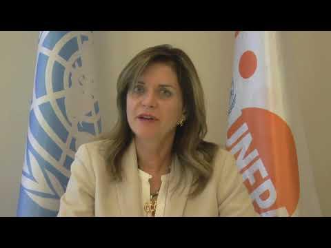 UNFPA Eastern Europe & Central Asia ' Regional Director Alanna Armitage