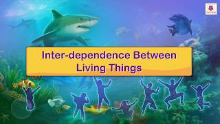 Inter Dependence Between Living Things | Science For Kids | Periwinkle