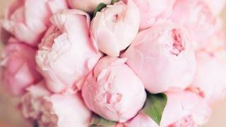 Поздравление слайд-шоу на розовую свадьбу 10 лет