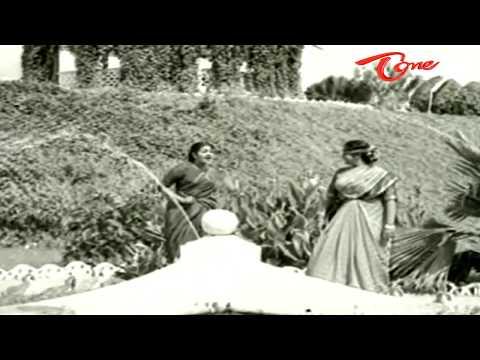 Telugu Old Songs | Velugu Needalu Songs | Chitti Potti | ANR | Savitri - OldSongsTelugu