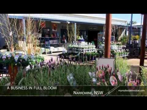 Nursery/Garden Centre Business for Sale - Narromine, NSW