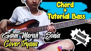 Download Chord & Tutorial Bass Gaun Merah - Sonia (Cover Tryana) Untuk Pemula