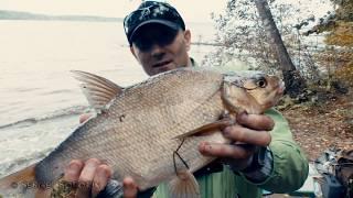 самоподсекающая Удочка  Ловля Леща  Рыбалка Осенью 2017