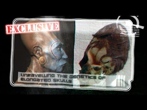 Interview with Brien Foerster -- Unravelling the Genetics of Elongated Skulls
