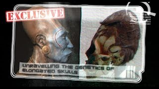 The Paracas Skulls: Evidence of Ancient Aliens?