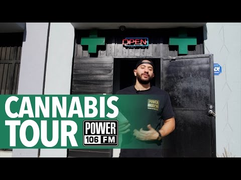 Cannabis Clinic Tour with Todd The Hater