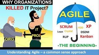 Agile Software Development (Industry)