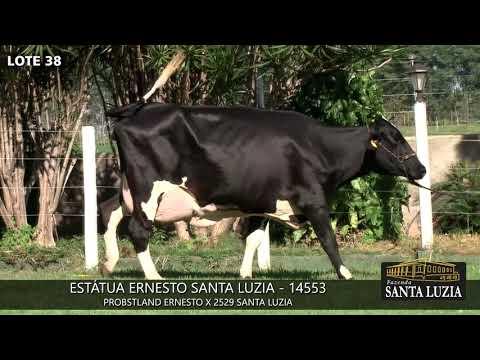 SANTA LUZIA   LOTE 38